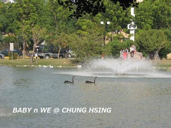 BABY n WE @ CHUNG HSING