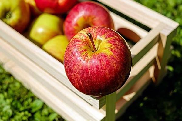 apple-1589869_640.jpg