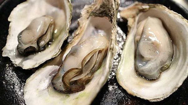 oyster-989182_640.jpg