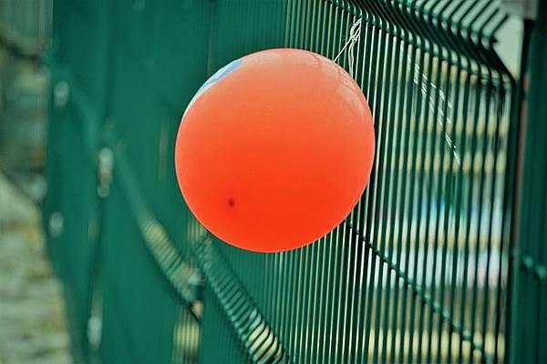 balloons-1864959_640.jpg