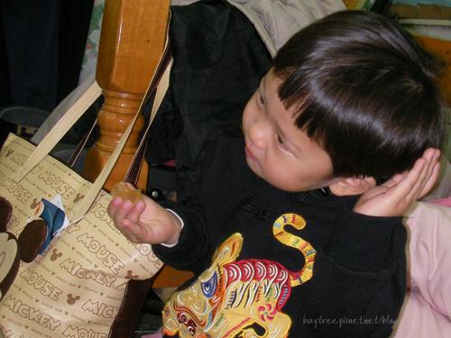 babyphoto10.jpg