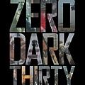 Zero Dark Thirty-2