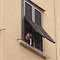門與窗之阿婆看窗外.jpg