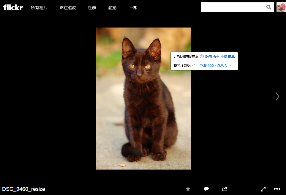 flickr_download_01.png