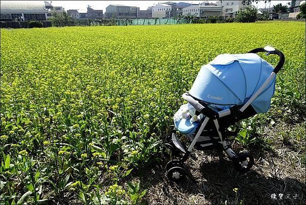 Combi-嬰兒手推車 (1).JPG