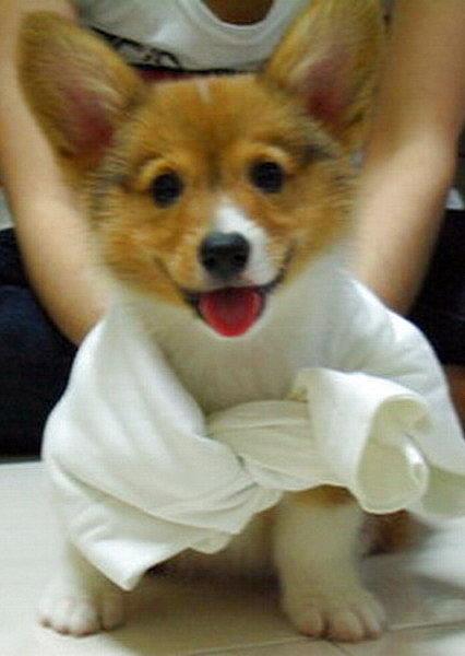 第一次圍領巾