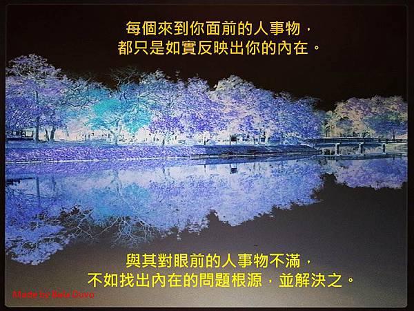 生活小語_反射