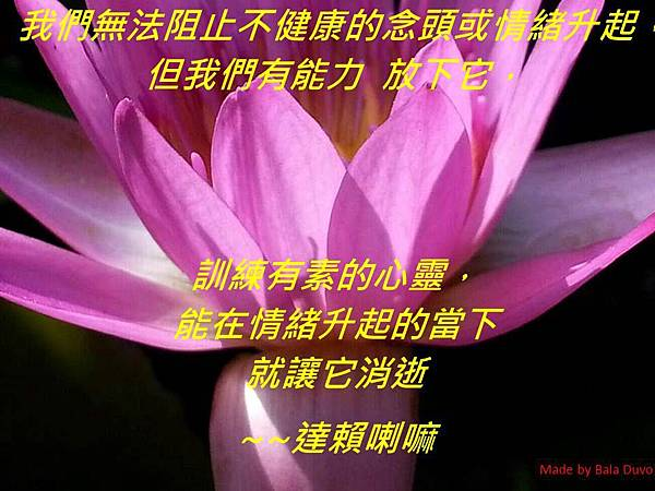 生活小語_情緒升起與放下