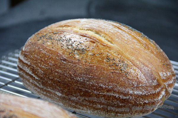 星野酵母-鄉村麵包-106.jpg