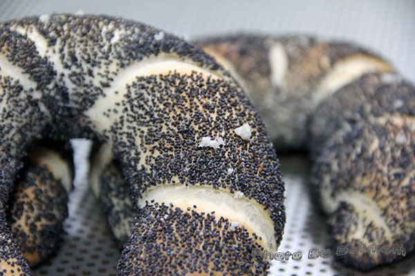 牛角鹽麵包-鳥越-036.jpg