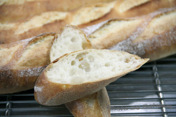 法國麵包-熊本櫻花-發酵種-029.jpg