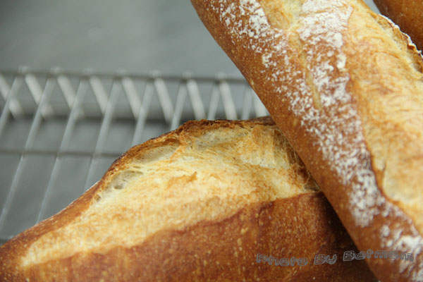 法國麵包-石臼裸麥+莫魯道石臼粉-017