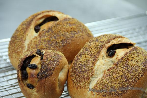 全麥胚芽麵包-015