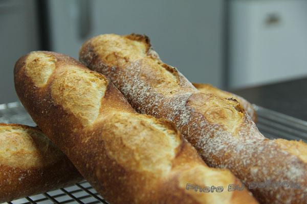 法國麵包-鳥越T55-液種-016