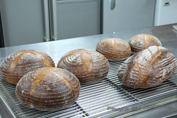 鄉村麵包-星野酵母-041