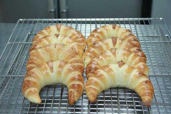 牛角鹽麵包-011