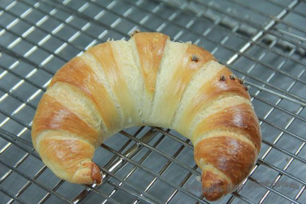 牛角鹽麵包-022