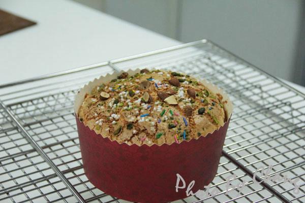 威尼斯麵包-軟式布里歐須-中種-041