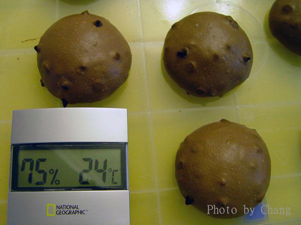 CDC巧克力球-014.jpg