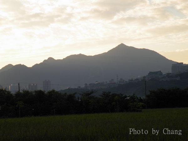 田園-風景-004.jpg