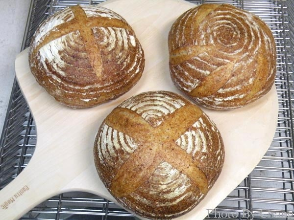 天然酵母鄉村麵包-030.jpg