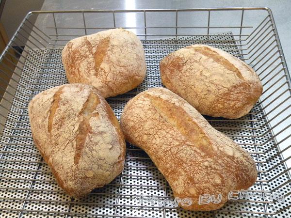 天然酵母農家麵包-液種-024.jpg