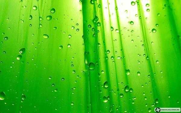 Green Simplicity_1920x1200.jpg