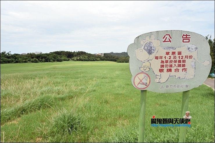 香山青青草原
