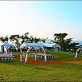 婚禮大草原