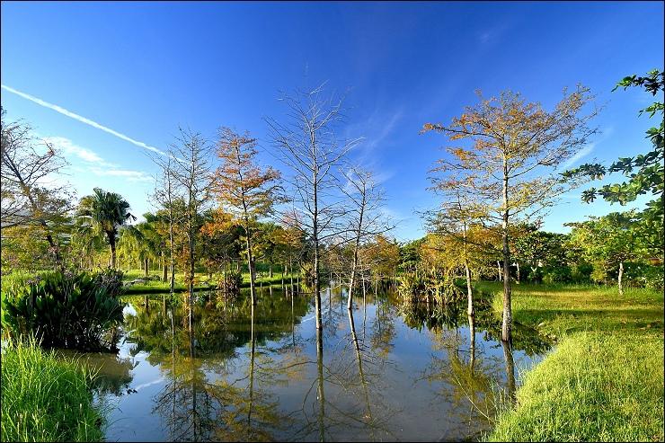 自然生態公園 (6)