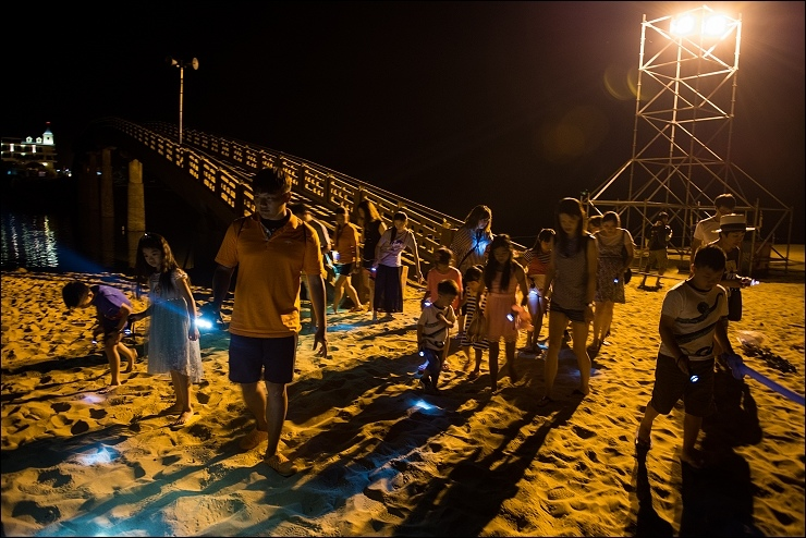夜訪沙蟹.jpg
