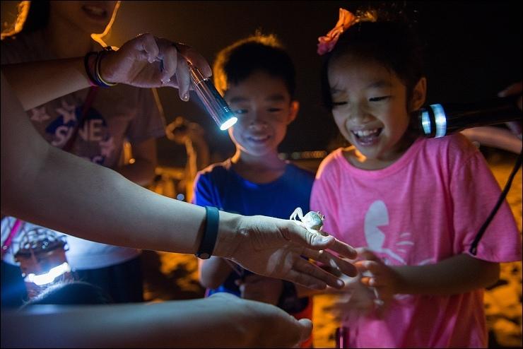 夜訪沙蟹3.jpg