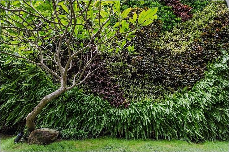 後花園.jpg