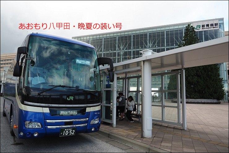 P8250939.jpg