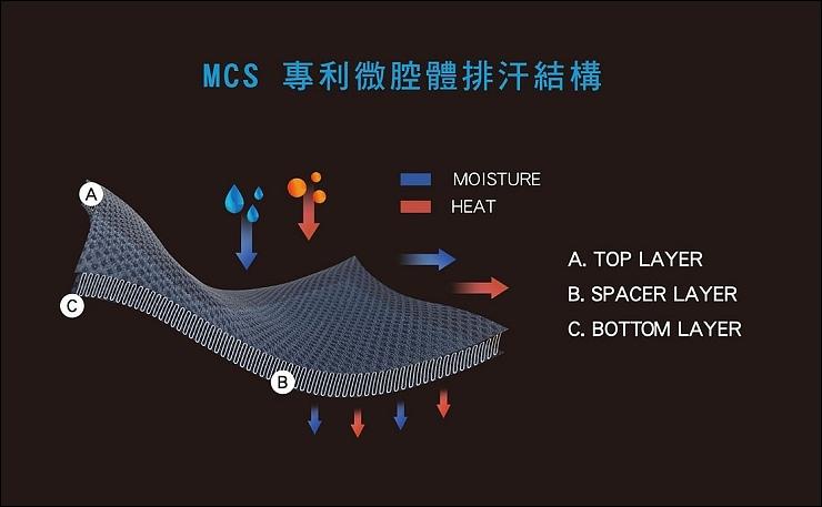 MCS Intro 2.jpg