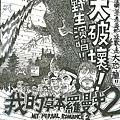 大破壞野生表演dm網路版.JPG