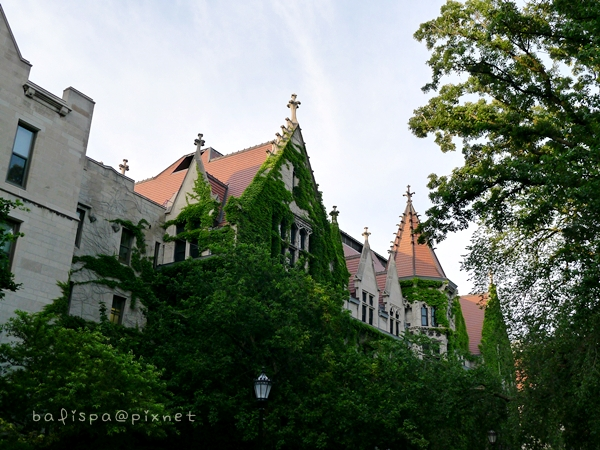 Snell-Hitchcock Halls