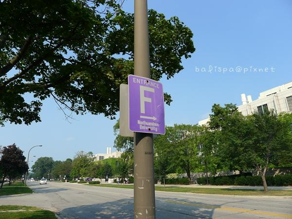 紫色停車牌