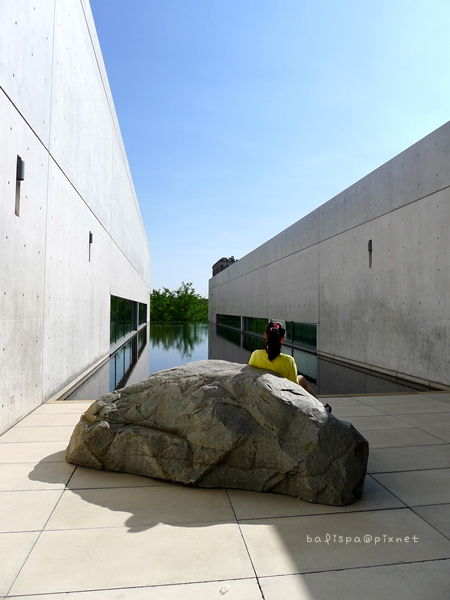 The Pulitzer Foundation for the Arts