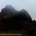 茶壼山 (15).jpg