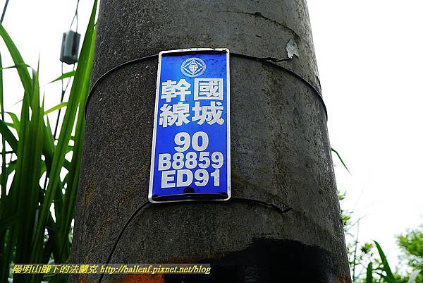 P1550859.jpg