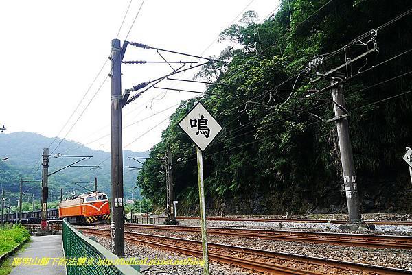 P1560291.jpg