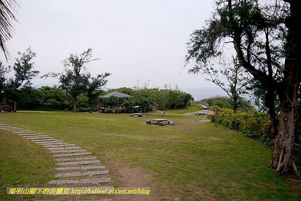 P1700377.jpg