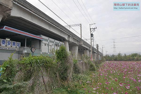 P1100164.jpg