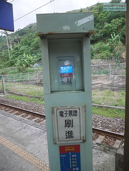 P1160919.jpg