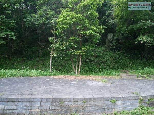 P1450674.jpg