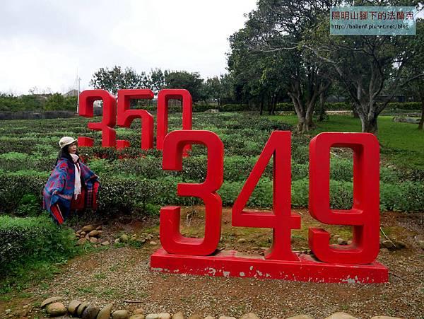 P1630879.jpg