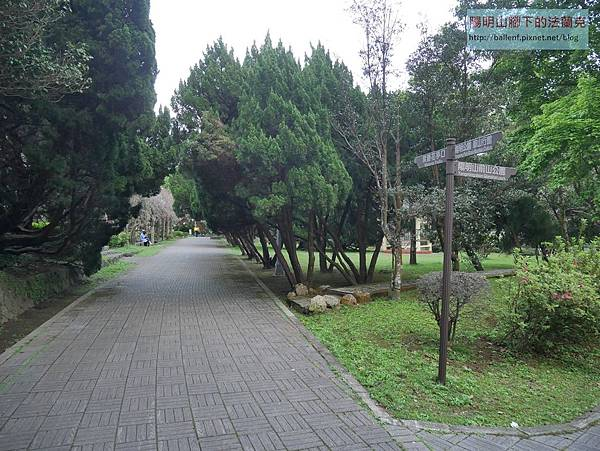P1660620.jpg