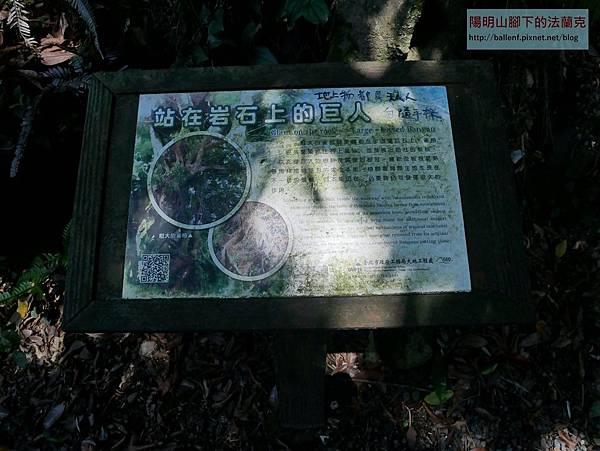 P1720037.jpg