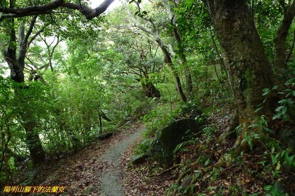 20090927 中正山 (10).jpg